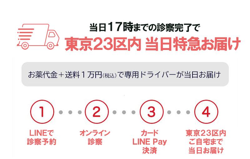 東京23区内・アフターピルの当日配送を行っています